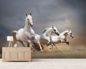 Galloping Horses wall mural living room preview