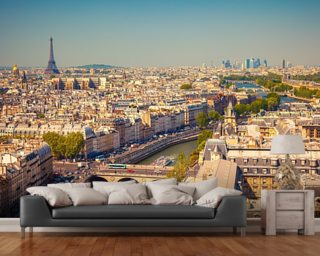 Ariel View of Paris wall mural