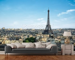 Paris City mural wallpaper