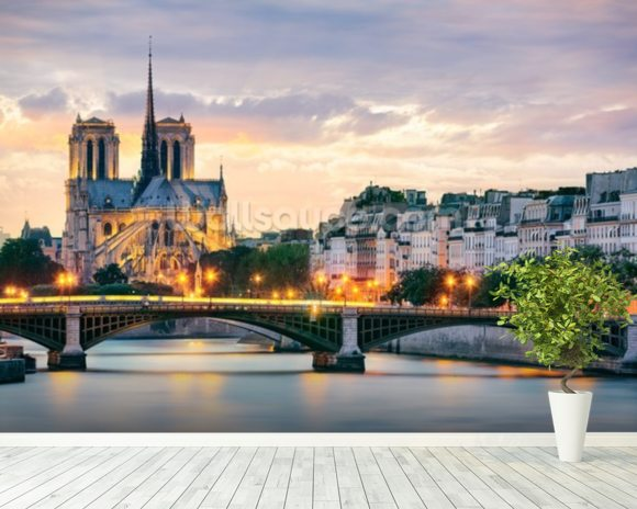 Notre Dame Wall Mural Room Setting Pictures Gallery