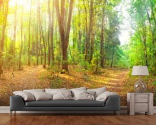 Sunny Day Forest Panorama wallpaper mural