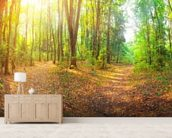 Sunny Day Forest Panorama wallpaper mural living room preview