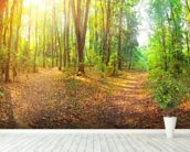 Sunny Day Forest Panorama wallpaper mural in-room view