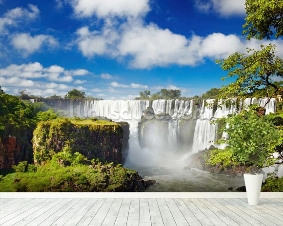Iguassu Falls, Argentina mural wallpaper room setting