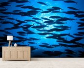 School of Fish wallpaper mural living room preview