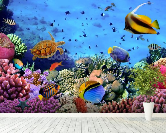 Coral Colony on a Reef wallpaper mural room setting