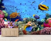 Coral Colony on a Reef wallpaper mural living room preview