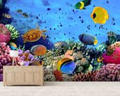 Photo of a Coral Colony mural wallpaper living room preview
