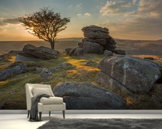 Emsworthy Dartmoor mural wallpaper