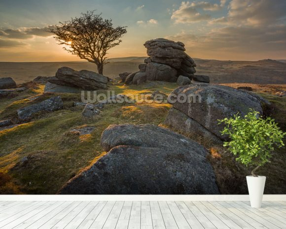 Emsworthy Dartmoor mural wallpaper room setting