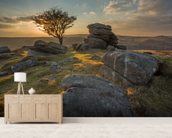 Emsworthy Dartmoor mural wallpaper living room preview