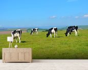 Devon Cows mural wallpaper living room preview