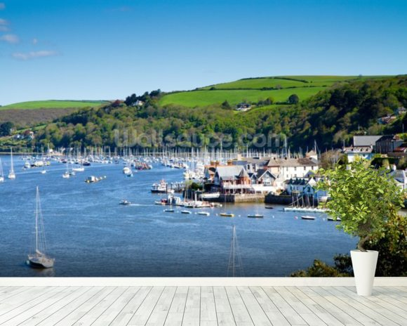Kingswear Devon wall mural room setting