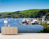 Kingswear Devon wall mural living room preview