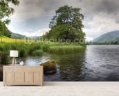 Grasmere, Lake District wallpaper mural living room preview