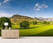 Cumbria wallpaper mural living room preview