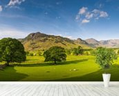 Cumbria wallpaper mural in-room view