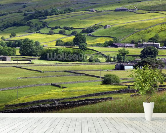 Yorkshire Dales National Park wall mural room setting