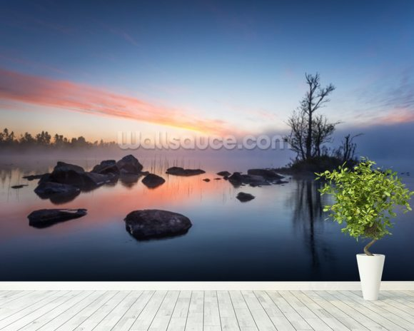 Misty Morning wallpaper mural room setting