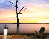 Old Tree Sunset mural wallpaper kitchen preview