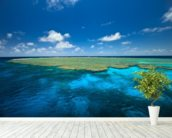 Clam Gardens, Great Barrier Reef wall mural in-room view