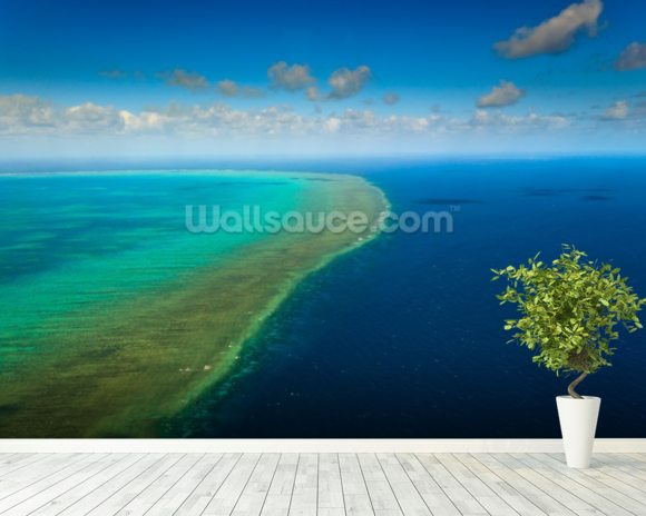 Great Barrier Reef wallpaper mural room setting