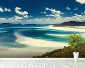 Whitehaven Beach, Australia mural wallpaper in-room view