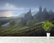 Old Man of Storr mural wallpaper in-room view