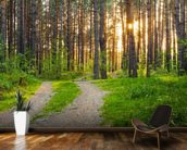 Forest Sunset mural wallpaper kitchen preview