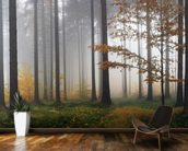 Misty Autumn Forest wall mural kitchen preview