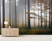 Misty Autumn Forest wall mural living room preview