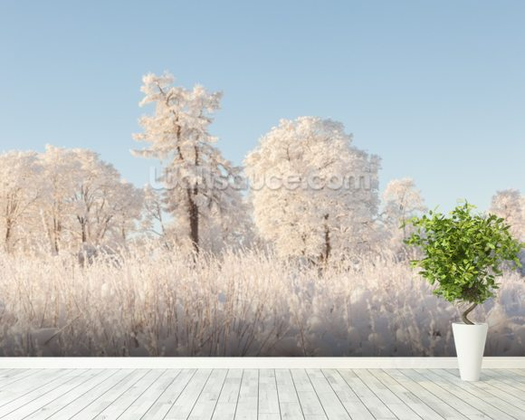 Snowy Trees Field wallpaper mural room setting
