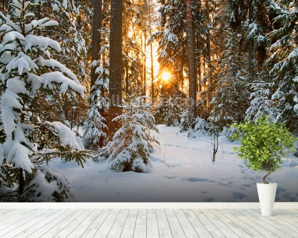 Winter Wonderland Wallpaper Wall Mural Wallsauce Europe