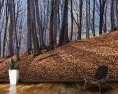 Homolje Mountains Autumn Woodland wall mural kitchen preview