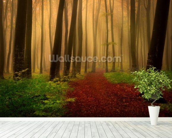 Foggy forest fairytale wall mural room setting