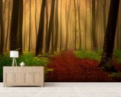 Foggy forest fairytale wall mural living room preview