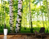 Birch Woodland wallpaper mural kitchen preview