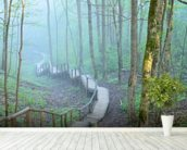 Foggy Forest Stairway mural wallpaper in-room view