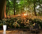 Sunlight Glow over Forest Flowers wallpaper mural kitchen preview