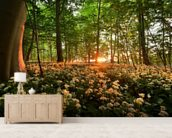 Sunlight Glow over Forest Flowers wallpaper mural living room preview