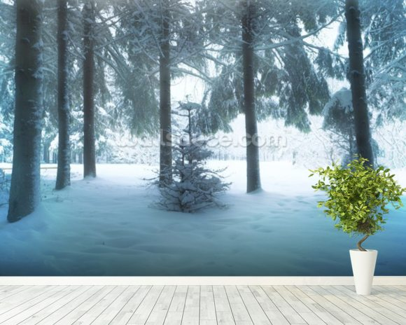 Winter Forest mural wallpaper room setting