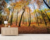 Autumn Trees wallpaper mural living room preview