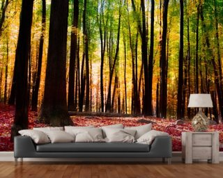 Wall Paper Mural tree wallpaper & forest wallpaper murals | wallsauce usa