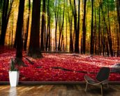 Colourful Autumn Forest mural wallpaper kitchen preview