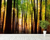 Colourful Autumn Forest mural wallpaper in-room view