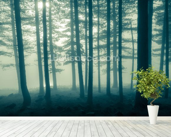 Foggy Forest wall mural room setting