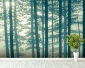 Foggy Forest wall mural in-room view