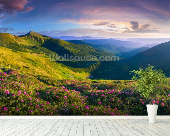 Lush Green Mountains wall mural room setting