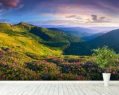 Lush Green Mountains wall mural in-room view