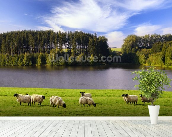Sheep mural wallpaper room setting